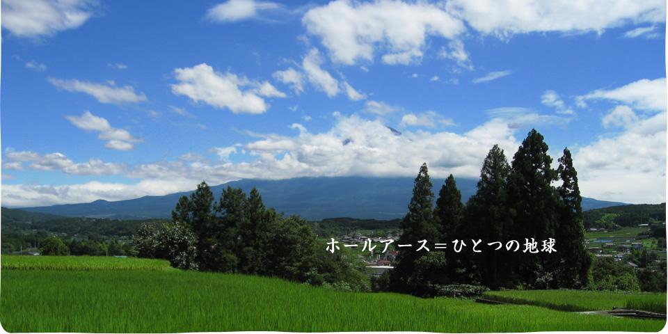 top_main_p_1