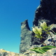 アラフジ 八ヶ岳トレッキングのお誘い