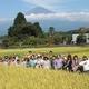 里山のようちえん9月 稲刈り完了しました!