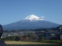 おいしい里山12月 (5).JPG