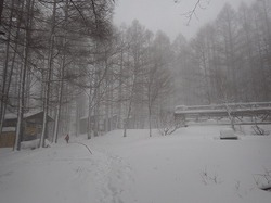 雪山チャレンジ2日目 (24).jpg