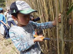 春の遊牧民キャンプ58.JPG