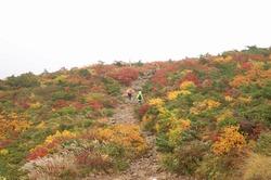 18フォトトレ安達太良山 (16).jpg