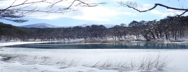 フォト&トレック~冬の森散策編~ 冬ならでは風景を満喫する1日