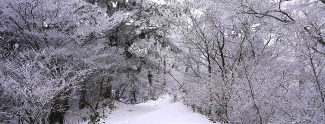 憧れの八ヶ岳で山小屋に泊まる2日間 歩いてしか辿り着けない日本最高所の野天風呂へ