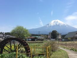 inogashira_1.jpg