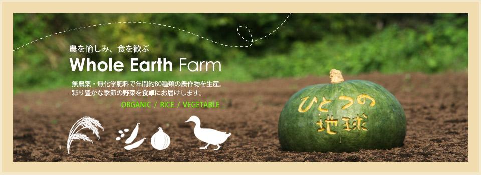 有機野菜と農業体験