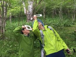 森歩き003.jpg