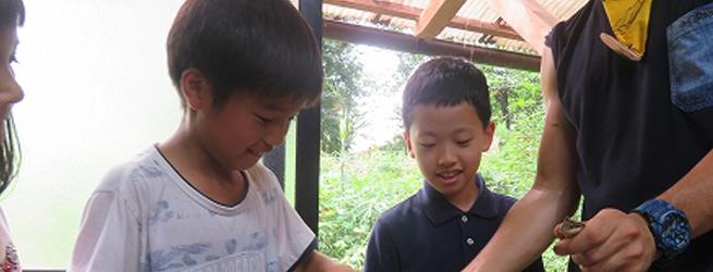 プロジェクト・ワイルド初級指導者講習会 大好きな生き物を通して子供に伝えたい方々へ